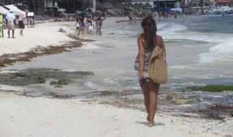 Living and Healing in Playa Del Carmen on $1200 U.S.D Per Month