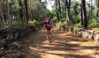 The Long Road Back! How I overcame 20 years of Chronic Illness Naturally!